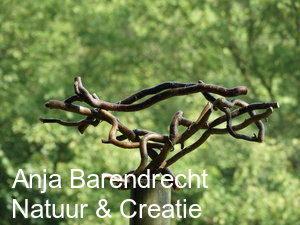 Anja Barendrecht Natuur & Creatie